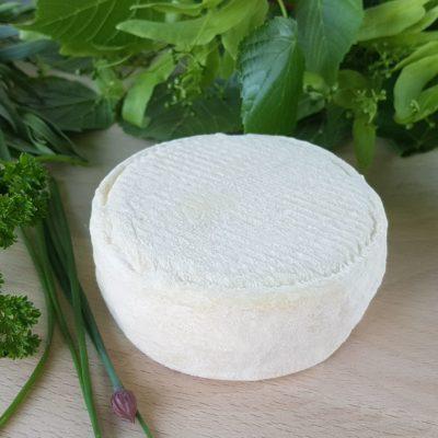 Petit fromage crémeux bio