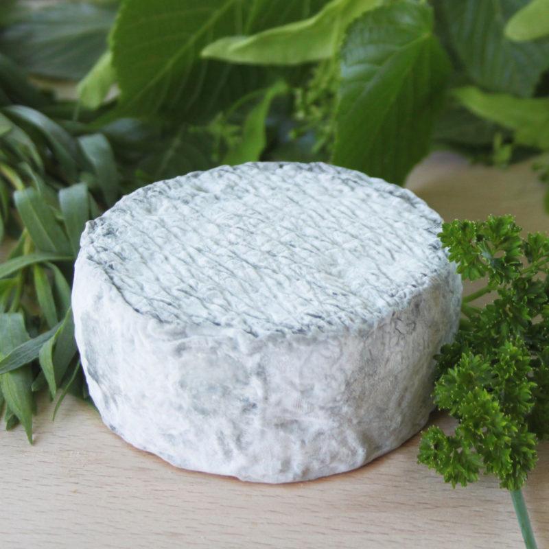 Petit fromage de chèvre cendré bio